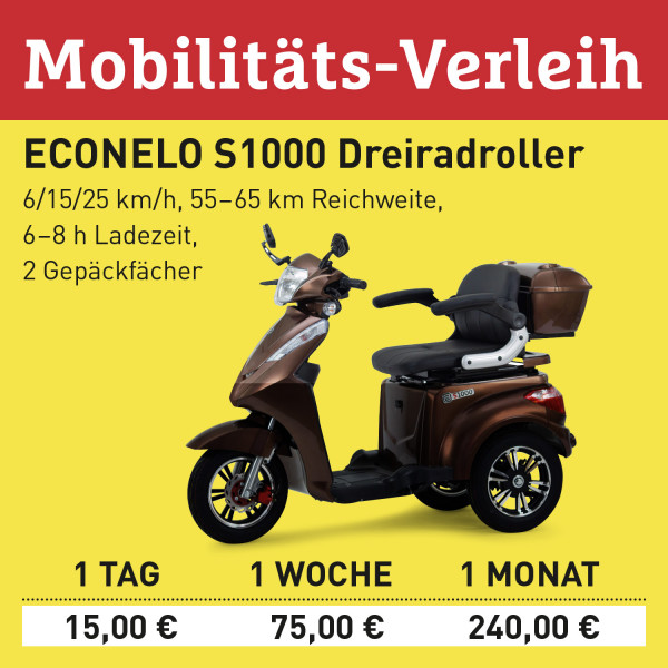 LEBENSFREUDE BY HOMANN Verleih Elektro-Scooter S1000